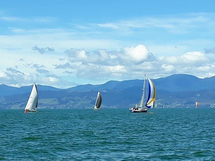 Mapua Race, Sunday 25 February.  Turned out a beautiful day with sun and NW'ly 8-12 knots balmy wind - despite earlier pessimistic forecast of 25 knots winds.